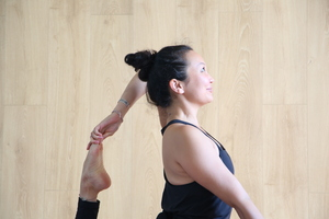 Hatha Vinyasa 2 (90 min) Dynamic & Challenging Level 2
