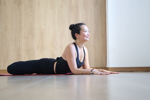 Drishti Vinyasa Yoga 2/3 Dynamic & Challenging Level 3